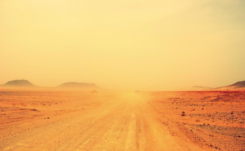 Sand Storm by Manuela de Pretis